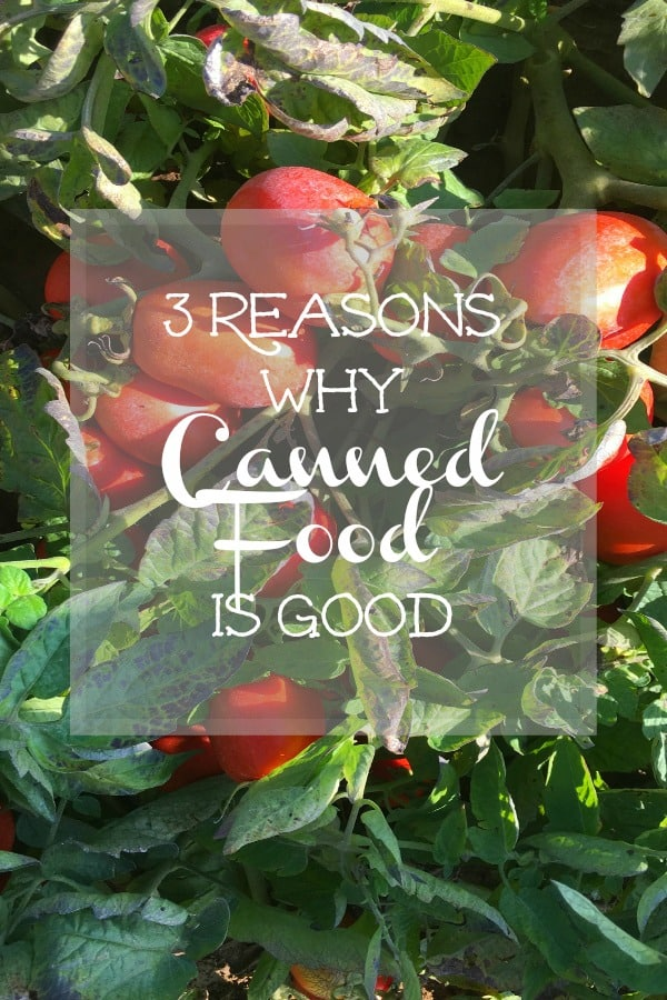 3 Reasons Why Canned Food Is Good